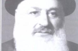 רבי אברהם ג'אנאשוילי